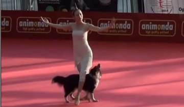 Зрители онемели от изумления, когда увидели, как танцует эта собака