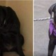 Как выглядят животные до и после того, как их забрали из приюта