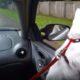 Животные, которые нарушают правила дорожного движения