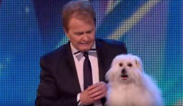 Когда эта собака начала говорить, у судей талант шоу отвисли челюсти от удивления!