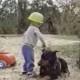 Самый терпеливый пес в мире готов вынести даже это!