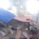 Собаку, с которой плохо обращались, первый раз погладили