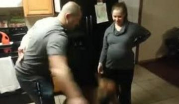 Собака защищает свою беременную хозяйку