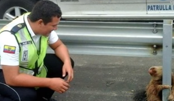 Сотрудник полиции помогает ленивому пешеходу перейти дорогу