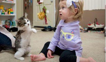 Девочка без одной руки и кошка без одной лапки стали лучшими друзьями