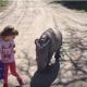 Девочка гуляет с маленьким носорогом