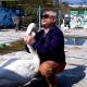 Лебедь Жора выражает свое недовольство хозяину зоопарка