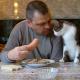 Кот просит у хозяина кушать