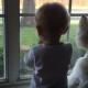 Ребенок и собака наблюдают за уткой!