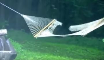 Медвежонок решил отдохнуть от лесной суеты