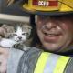 Пожарные, рисковавшие своей жизнью ради спасения животных!