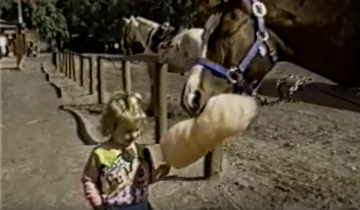 Что делают самые смешные лошадки в мире?