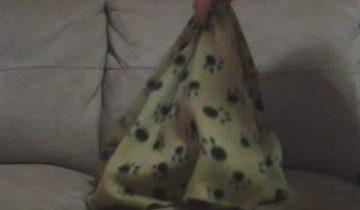 Эту собаку накрыли покрывалом. Посмотрите, что с ней произошло!