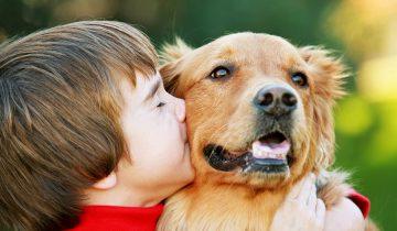 Дети и собаки. Веселая подборка!