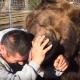 Необычная дружба человека и медведя гризли