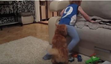 Мальчик был непослушным. Кошка решила его наказать