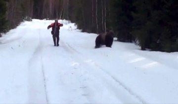 Медведь испугался беззащитного человека!