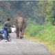 Стал посреди дороги и никого не пропускает!