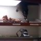 Енот идет за пончиком
