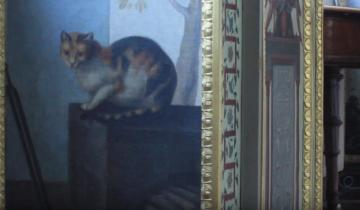 В подвале Петербургского Эрмитажа официально проживает 70 котов!