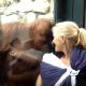 Когда мама с младенцем остановилась возле вольера с орангутангом, он…