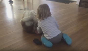 Маленькая девочка и дружелюбный хаски