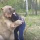 Что бывает, когда русский встречает медведя в лесу?