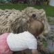 Малыш и собака породы командор отдыхают на травке!