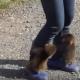 Две обезьянки прицепились к ноге