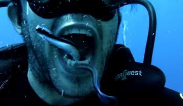 Этот парень выбрал самый необычный способ почистить зубы!