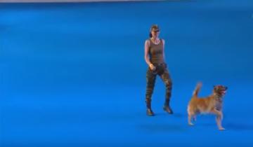 Фейерическое выступление собаки на чемпионате мира!