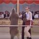 Вуди Аллен против кенгуру