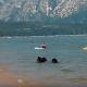 Мама-медведица привела своих малышей на пляж!