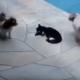 Кот отомстил надоедливым собакам!