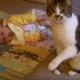 Мама положила своего малыша на пол