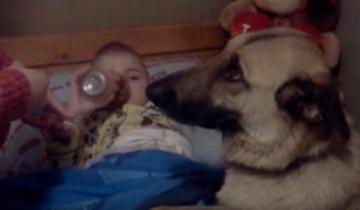 Он спас собаку от смерти. То, что она делает в ответ — поражает!