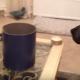 Собака знакомится с новым членом семьи!