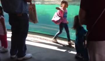 Просто невероятна реакция морского льва на падение маленькой девочки!
