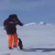 Хотел сфоткаться с пингвином