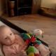 Собака не догадывалась, что, забрав у ребенка игрушку, придется искупать вину!