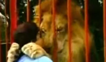 Эта женщина нашла маленького львенка