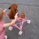 Что в коляске у этой девочки?