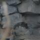 Домашняя кошка «удочерила» малыша рыси, от которой отказалась родная мама!