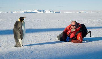 Каждый день пингвин одевает рюкзак и направляется…