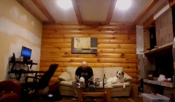Пес подглядывает за трапезой хозяина