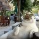 Самому известному коту из Стамбула поставили памятник