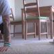 Собака занимается йогой