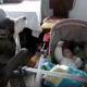 Этот пес успокоит малыша лучше людей