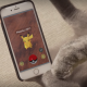 Играем в Pokemon Go