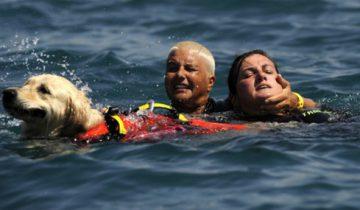 Женщину с собакой спасли в последние секунды
